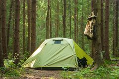Kamping δέντρων θερινής πράσινη δασική φύσης τσάντα ταξιδιού ταξιδιού ήλιων ευτυχής στοκ εικόνες