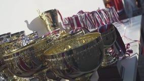 Kampioens gouden trofeeën stock footage