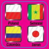 kampioenschap Voetbal Grafische vlaggen De Realistic Football ballen van groepsh vector illustratie