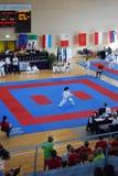 Kampioenschappen van de Karate van Wuko de Europese stock foto's