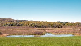 Kampoosa Bog and pond wetlands. Area drainage basin of critical concern, hills and blue sky Springtime , Stockbridge Berkshires Massachusetts stock photo