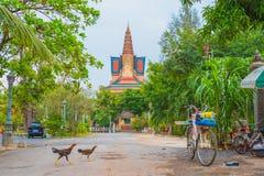 Kampot寺庙 库存图片