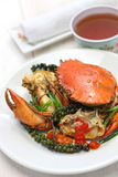 Kampot green pepper crab Royalty Free Stock Photos