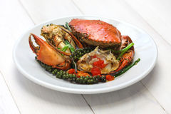 Kampot green pepper crab Royalty Free Stock Images