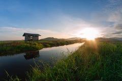 Kampung Sangkir, Kota Kelud, Kota Kinabalu, Сабах, Малайзия Padd Стоковые Изображения