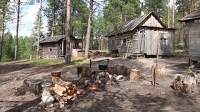 Kampvuur dichtbij hut in bos stock video