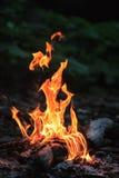 Kampvuur met vlamtongen die in de avond branden Verticale dichte omhooggaande mening Royalty-vrije Stock Fotografie
