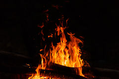 Kampvuurvlammen op een zwarte achtergrond Royalty-vrije Stock Afbeelding