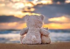 Kamratskap - två nallebjörnar Fotografering för Bildbyråer