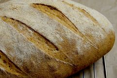 Kamut bröd upp slut Arkivfoton