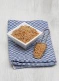 Kamut, Khorasan wheat, Triticum turgidum x polonicum. Ur cereal Kamut, Khorasan wheat, Triticum turgidum x polonicum Royalty Free Stock Images