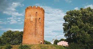 Kamyenyets,布列斯特州,白俄罗斯 Kamyenyets塔在与绿草的晴朗的夏日在前景 徒升,放大 股票视频