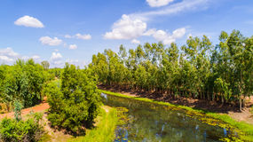 Kanäle in der Landschaft 2 Lizenzfreie Stockfotos