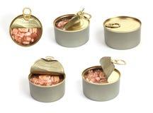 kan öppna övre tonfisksikt Royaltyfri Foto