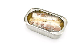 kan öppnad sardinestin Royaltyfria Bilder