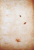Kan als prentbriefkaar worden gebruikt Stock Afbeelding