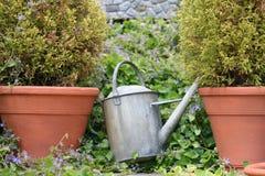 kan arbeta i trädgården att bevattna Royaltyfri Fotografi