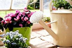kan arbeta i trädgården att bevattna Arkivbilder