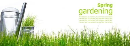 kan arbeta i trädgården att bevattna för gräshjälpmedel royaltyfri bild