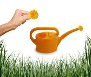 kan arbeta i trädgården set bevattna för gräshand Fotografering för Bildbyråer