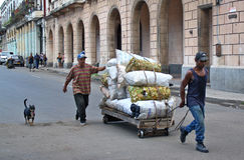 Kan collectoren, Havana, Cuba Stock Foto's
