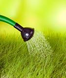 kan gräs att bevattna Fotografering för Bildbyråer