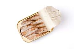 kan sardines Arkivfoto