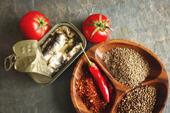 kan sardines Royaltyfri Bild