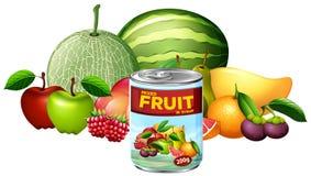 A kan van Gemengd Fruit en Vers Fruit vector illustratie