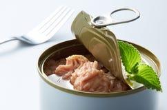 Kan Voedsel Royalty-vrije Stock Afbeeldingen