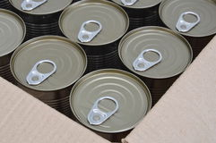 Kan voedsel in de doos Royalty-vrije Stock Foto's