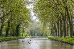 kanał du Midi fotografia stock