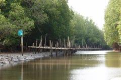 Kanał i most, piękni drzewa, dobrzy natura Obraz Stock