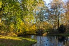 Kanały Amstelveen, jesień czas Obraz Stock