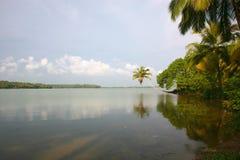 Kanały w Tylnym Nawadniają w Kerala obraz royalty free
