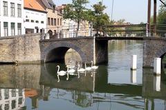 Kanały w Brugge Fotografia Royalty Free