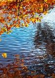 Kanaal in de Herfst stock afbeeldingen