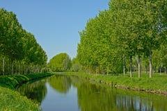 kanaal ` DE Moer ` met groene grenzen met stegen van bomen royalty-vrije stock fotografie