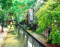 Kanaal met bomen Stock Foto