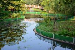 Kanaal in park Stock Foto's