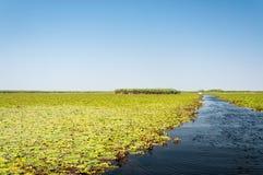 Kanaal van de Delta van Donau stock fotografie