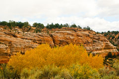 Kanab canyon Stock Image
