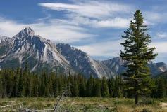 Kanada Arkivfoto