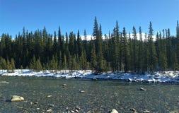 Kanada Alberta Kananaskis Elbow River Royaltyfri Fotografi