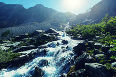 Kanada berg royaltyfri foto
