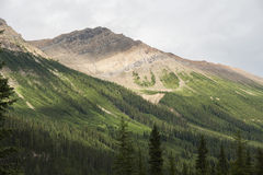 Kanada - British Columbia - Yoho Nationalpark Arkivfoto