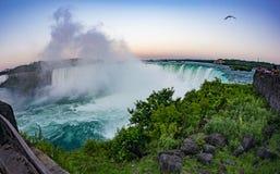 Kanada faller niagara Royaltyfri Foto