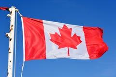 Kanada flaga państowowa Obraz Royalty Free