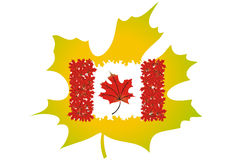 Kanada flagga Royaltyfria Bilder