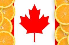 Kanada flagga i vertikal ram för citrusfruktskivor arkivfoto
